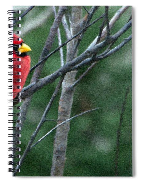 Cardinal West Spiral Notebook