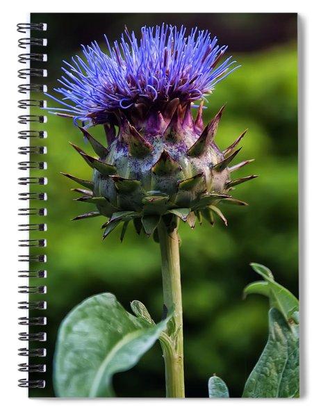 Cardoon Spiral Notebook