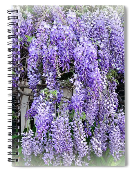 Cascading Wisteria Spiral Notebook