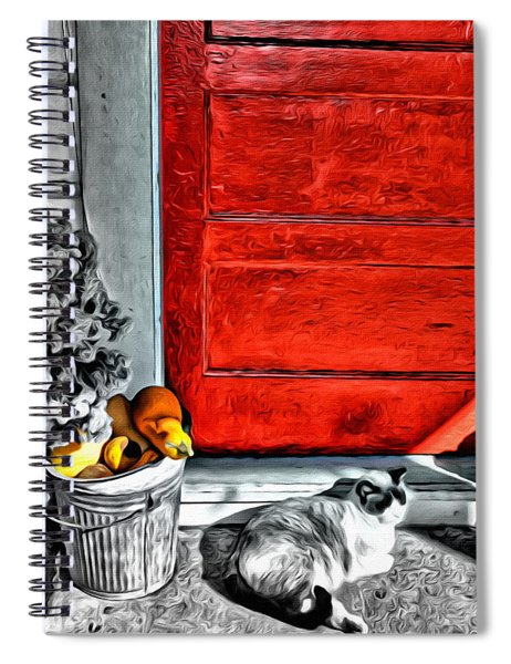 Cat By The Red Door Spiral Notebook