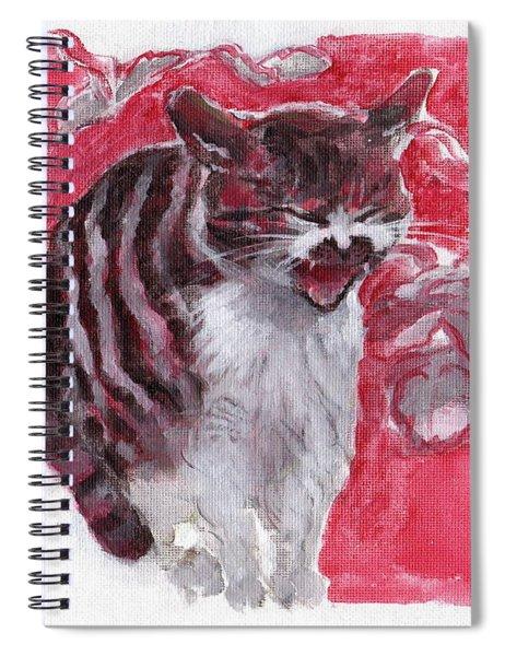 Cat Complains  Spiral Notebook
