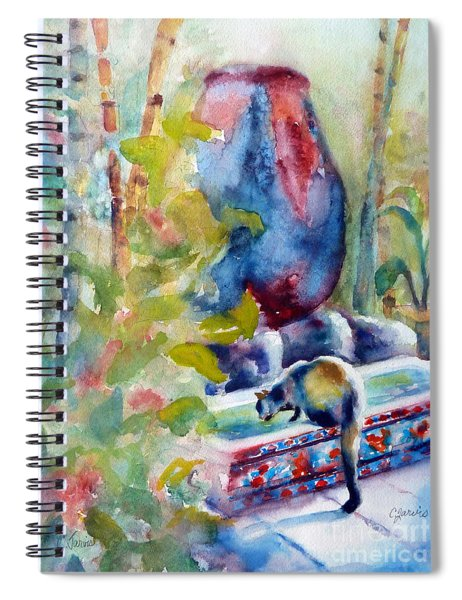 Cat Drinking Fountain Spiral Notebook