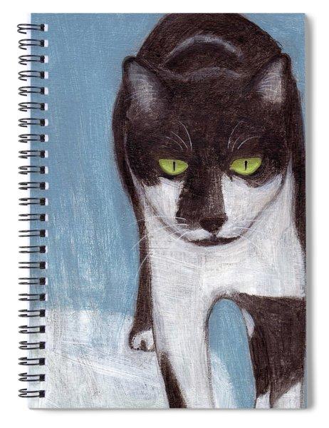 Cat In Winter Spiral Notebook