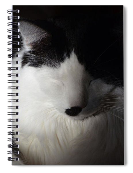 Cat Nap Spiral Notebook