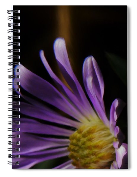 Catching The Sun's Rays Spiral Notebook