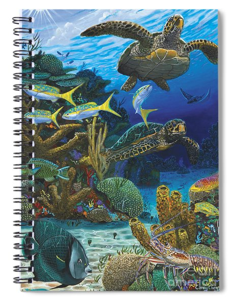 Cayman Turtles Re0010 Spiral Notebook