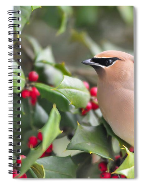 Cedar Waxwing In Holly Tree Spiral Notebook