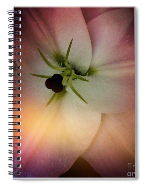 Center Spiral Notebook
