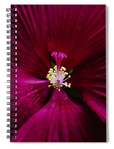 Center Folds Spiral Notebook