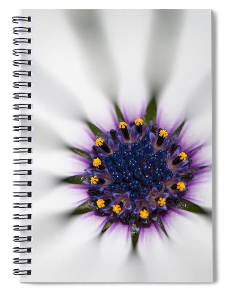 Center Of Life Spiral Notebook