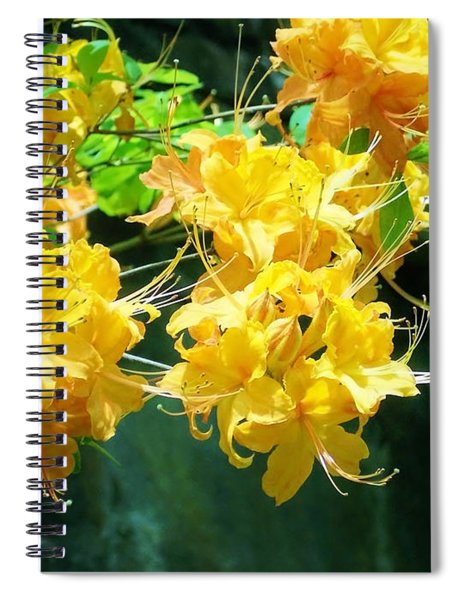 Centered Yellow Floral Spiral Notebook