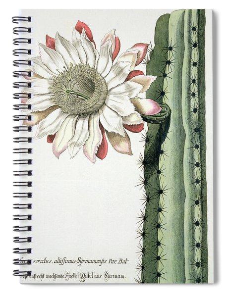 Cereus Erectus Altissimus Syrinamensis Spiral Notebook