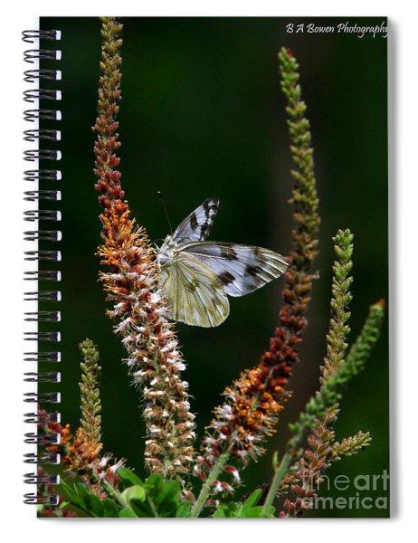 Checkered White On An Indigo Spiral Notebook