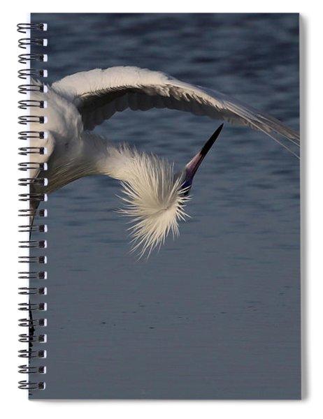 Checking For Leaks - Reddish Egret - White Form Spiral Notebook