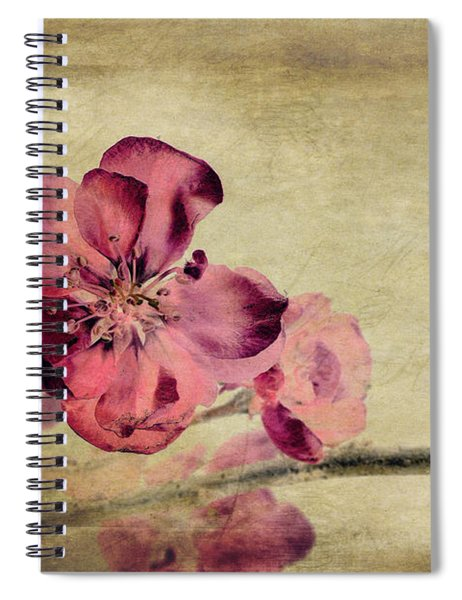 Cherry Blossom With Textures Spiral Notebook