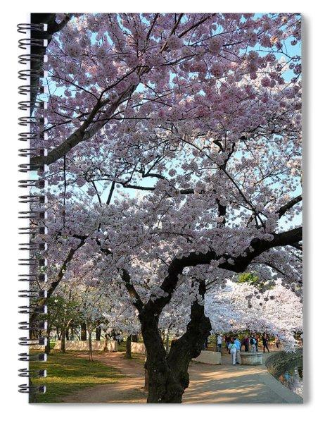 Cherry Blossoms 2013 - 044 Spiral Notebook