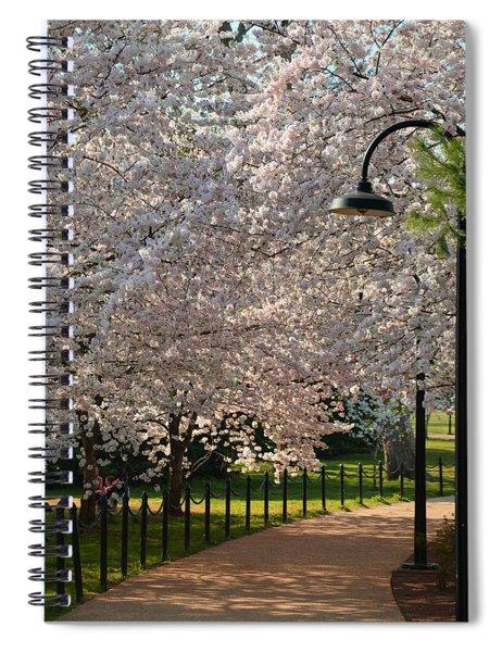 Cherry Blossoms 2013 - 060 Spiral Notebook