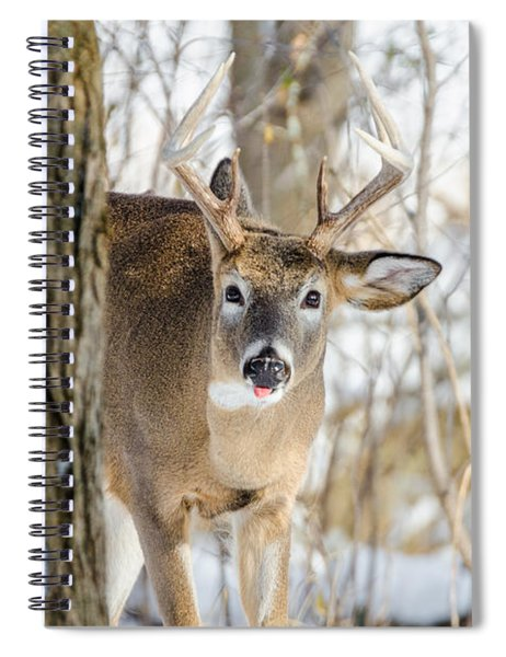 Childish Buck Spiral Notebook