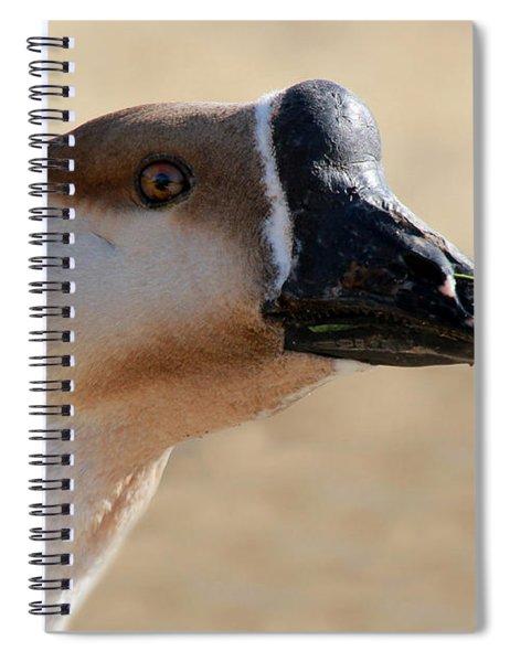 Chinese Watchdog 2 Spiral Notebook