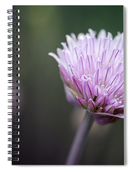 Chives Flower Macro Spiral Notebook
