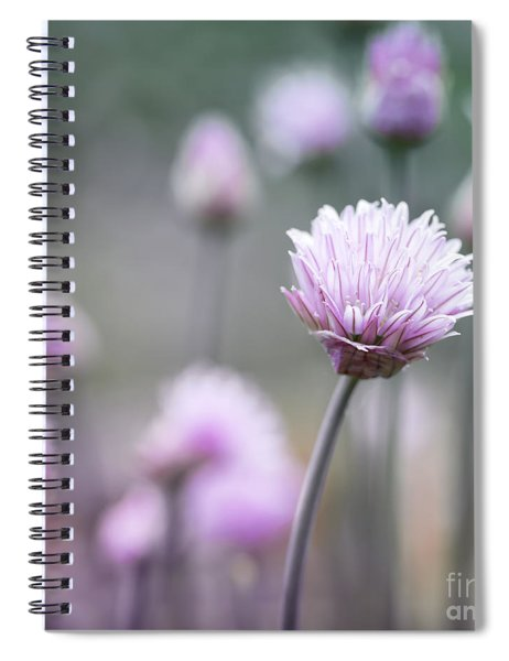 Chives Flowering I Spiral Notebook
