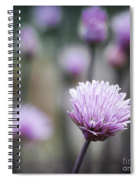 Chives Flowering II Spiral Notebook