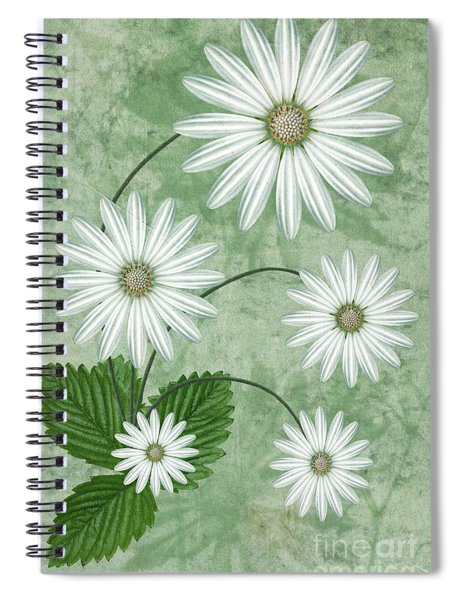 Cinco Spiral Notebook