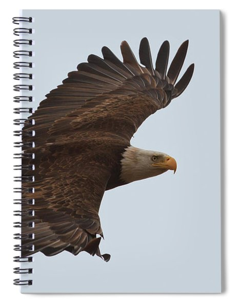 Close Encounter Of The Best Kind Spiral Notebook