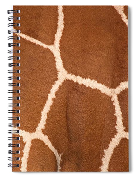 Close-up Of A Reticulated Giraffe Spiral Notebook