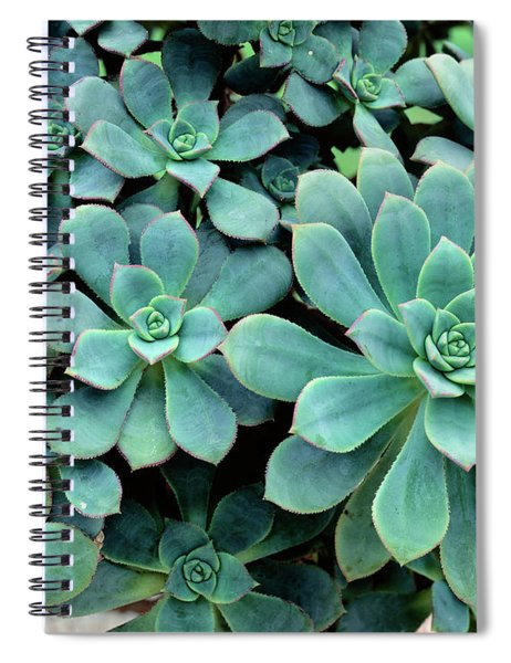 Close-up Of Plants, Buffalo And Erie Spiral Notebook