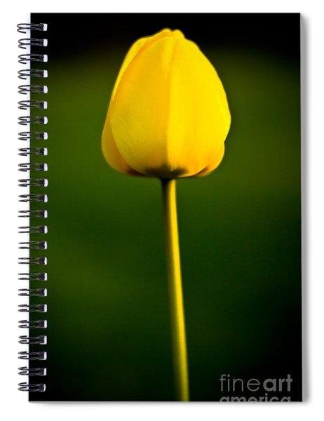 Closed Yellow Flower Spiral Notebook