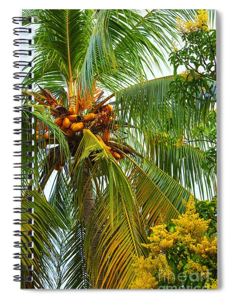 Coconut Palm In Tropical Garden Spiral Notebook