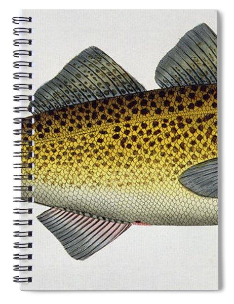Cod Spiral Notebook