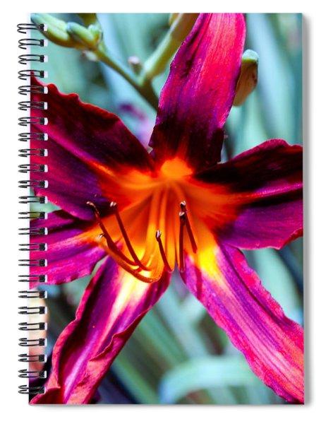 Color Explosion II Spiral Notebook