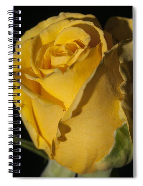 Color Of Love Spiral Notebook