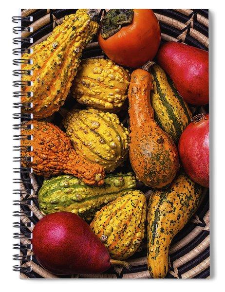 Colorful Autumn Gourds Spiral Notebook