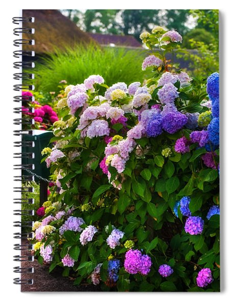 Colorful Hydrangea At The Gate. Giethoorn. Netherlands Spiral Notebook