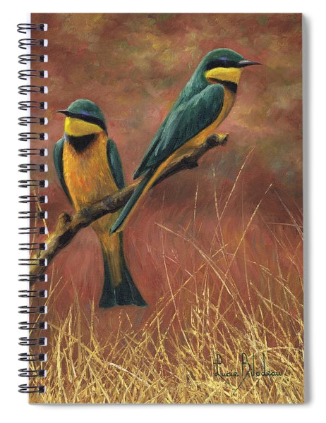 Colorful Pair Spiral Notebook