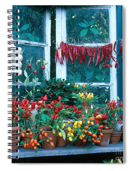 Colorful Peppers Spiral Notebook