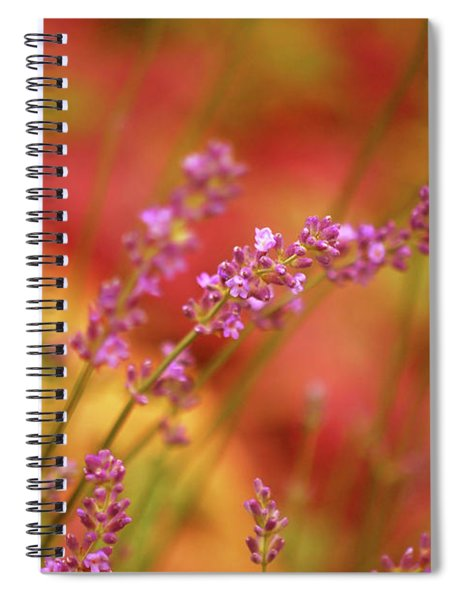 Colors I Love Spiral Notebook
