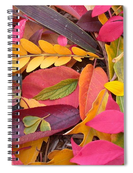 Colors Of Autumn Spiral Notebook