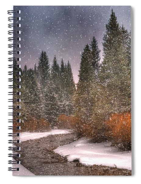 Colours Of Winter Spiral Notebook
