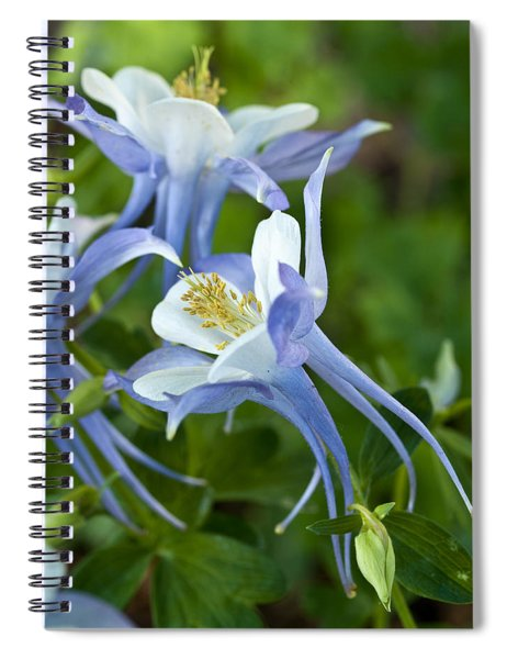 Columbine-2 Spiral Notebook