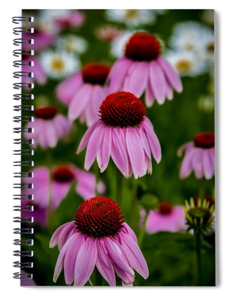 Coneflowers In Front Of Daisies Spiral Notebook