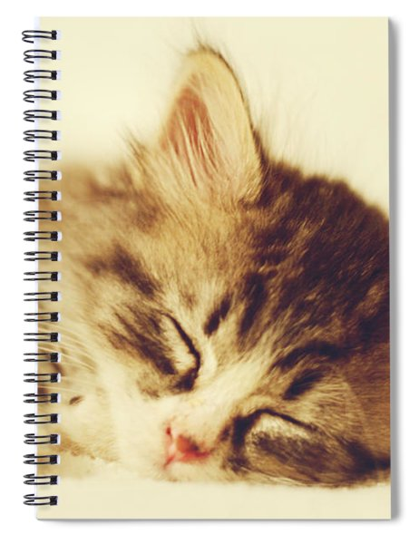 Content Kitty Spiral Notebook