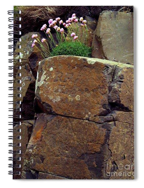 Contrast Study Spiral Notebook