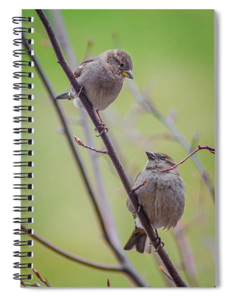 Conversation Of The Day Spiral Notebook