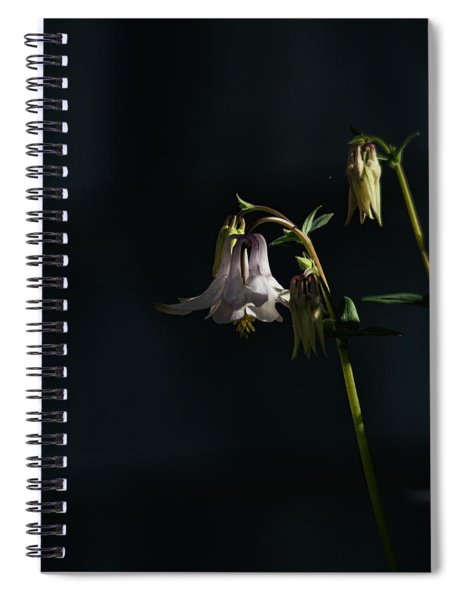 Cooling Shade Spiral Notebook