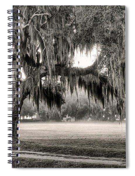 Coosaw - Split Oak Spiral Notebook