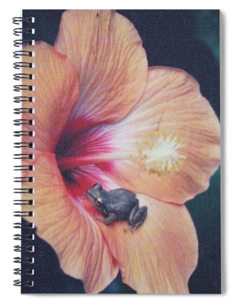 Coqui  Spiral Notebook
